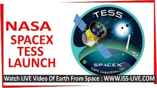 Download SpaceX Launch : NASS TESS Planet Hunter Satellite - landing of stage one and satellite deployment Video