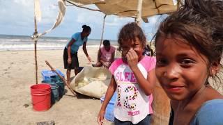 Download Honduras Malaria Champion (short) Video