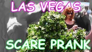 Download THE FUNNIEST BUSHMAN SCARE PRANKS EVER - The Las Vegas Bushman Prank - Episodes 5-8 FUNNY VIDEO Video