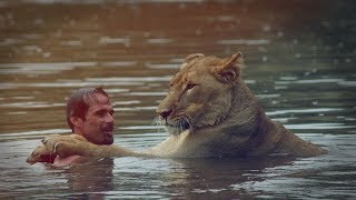 Download Part 2: The Long Journey Ahead | The Lion Whisperer Video