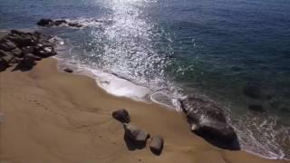Download 屋久島PR動画(ドローン空撮) Video