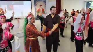 Download AKM Köln Halk Danslari 2015 Gaziantep Yöresi Video