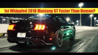 Download Exclusive First 2018 Mustang GT Whipple Crushes 1/4 Mile Video