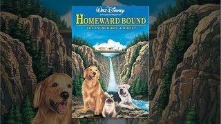 Download Homeward Bound: The Incredible Journey Video