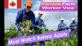Download How To Get Canada Farm Worker Visa | Must Watch Before Apply Video