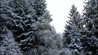 Download Les premières chutes de neige, un instant magique (oct 2015) Video