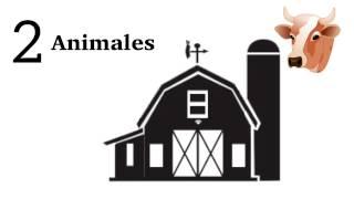 Download Te explicamos cómo tener una granja autosustentable en media hectárea Video