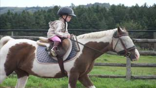 Download 3 year old girl starting a journey into the love of horse riding.... Video