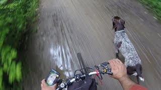 Download How to train dog to run along with your bicycle off leash. Video