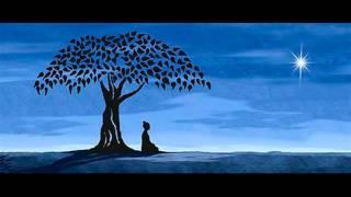 Download mantras, una caricia para el alma Video