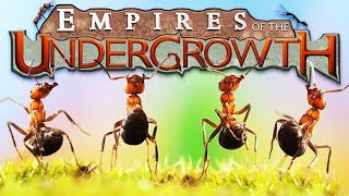 Download The Ant EMPIRE! - Building a Black ANT COLONY! - Empires of the Undergrowth Gameplay Video