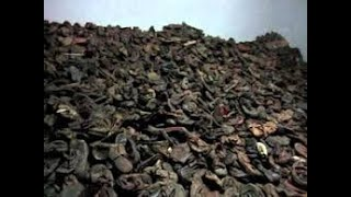 Download Video Tour AUSCHWITZ - BIRKENAU - Schindler Factory Video