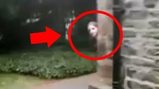 Download Real Ghost Caught On Camera? Top 5 Scary Haunted Houses Video