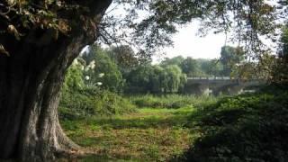 Download Connie Dover-Shenandoah Video