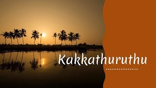 Download Kakkathuruthu Video