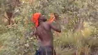 Download Bird Hunt Video