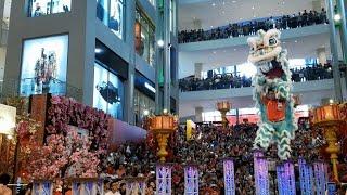 Download CNY2017 ~ Acrobatic Lion Dance (múa lân 高樁舞獅) by Kun Seng Keng 关圣宫 @Pavilion KL (15/1/2017) 4K UHD Video