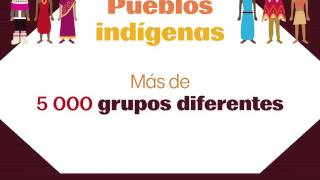 Download Pueblos Indígenas - Poster Video