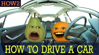 Download HOW2: How to Drive a Car! Video