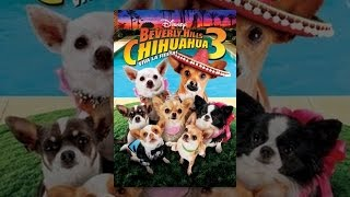 Download Beverly Hills Chihuahua 3: Viva La Fiesta! Video