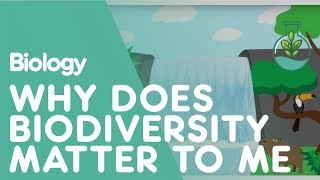 Download Why Does Biodiversity Matter To Me? | Biology for All | FuseSchool Video