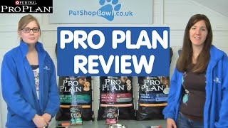 Download Review of Pro Plan Dog Food Video