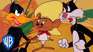 Download Looney Tunes | Best of Speedy Gonzales | Classic Cartoon Compilation | WB Kids Video