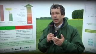 Download Les bases agronomiques : actionner tous les leviers ! - ARVALIS-infos.fr Video