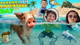 Download SWIMMING with PIGS in BAHAMAS + IGUANA ISLAND FUNnel Family Exuma Tour Adventure Day #1 Video
