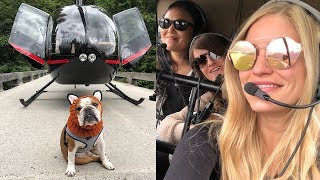 Download Flying with the AMAZING Helicopter Dog Bentley! Video