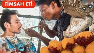 Download Dünyanın En Egzotik Pazarı (Timsah Eti Yiyorlar) - Ayahuasca Çayı, Bitkisel Tedavi Video