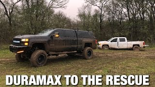 Download How does a Pavement Princess Do in the MUD??? Video