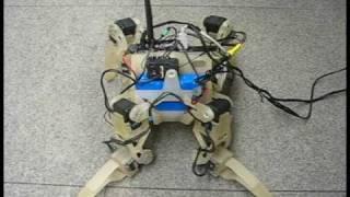 Download QuadraTot: A Learning Quadruped Robot Demo, Cornell University Video