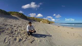 Download Explore Kangaroo Island in 360 Video