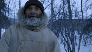 Download Winter Grizzly Bears Are Bold, Starving and Will Eat Anything Video
