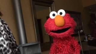 Download Elmo performs Beyoncé's Single Ladies! Video