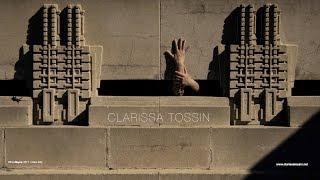 Download Encontro das Águas (Meeting of Waters) | Clarissa Tossin || Radcliffe Institute Video