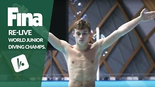 Download LIVE - Day 5 Final - FINA World Junior Diving Championships 2016 - Kazan (RUS) Video