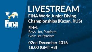Download LIVE - Day 5 Final - FINA World Junior Diving Championships 2016 - Kazan (RUS) Video