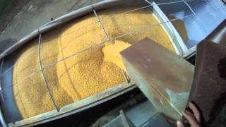 Download Loading Semi Hopper Bottom with Corn and Hauling to Ethanol Plant 11-3-2011 Video