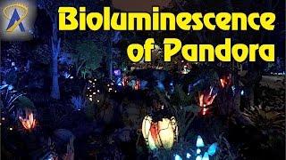Download Nighttime look at bioluminescence of Pandora - The World of Avatar at Disney's Animal Kingdom Video