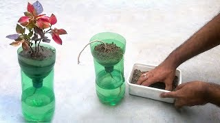 Download Self watering system for plants using waste plastic bottle Video