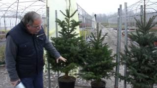 Download Der Lubera Weihnachtsmarkt Video
