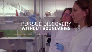 Download How our corporate partners are helping us beat cancer | Cancer Research UK (2019) Video