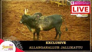 Download Alanganallur Jallikattu 2018 | LIVE | Part 1 Video