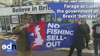 Download Nigel Farage accuses the government of Brexit 'betrayal' Video