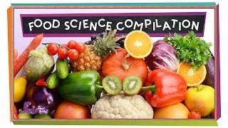 Download Food Science Compilation Video