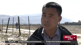 Download Chinese community in South Africa discusses beefing up security Video