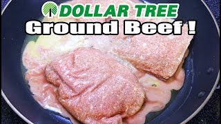 Download Uh Oh...Dollar Tree Sells GROUND BEEF!! - WHAT ARE WE EATING?? - The Wolfe Pit Video