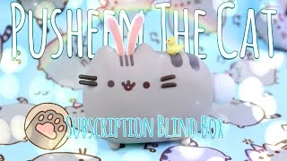 Download Unbox Daily: PUSHEEN THE CAT Subscription Blind Box | Vinyl Fugure, Clothing & Much More Video